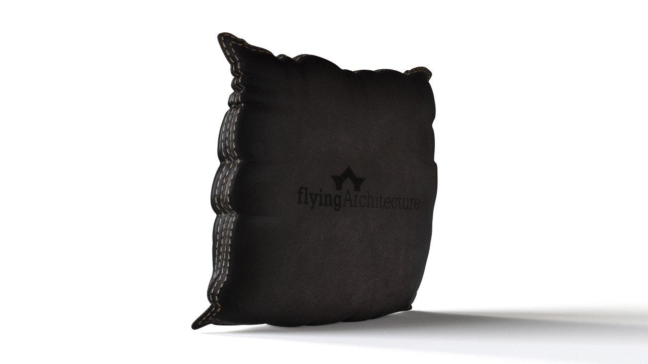 9d543ac57cbc39 3D Pillow | FlyingArchitecture