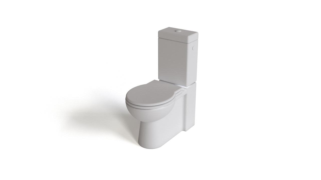 Monoblock toilet