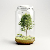 Forest Digital