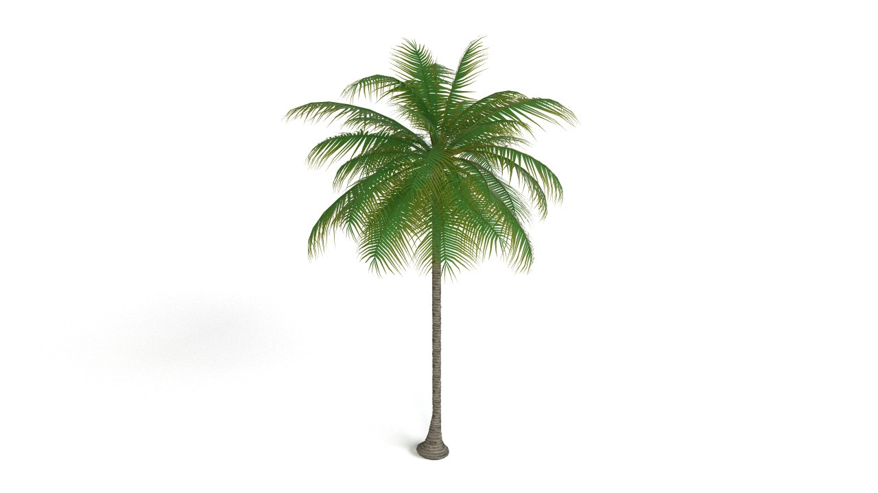 Palm tree | FlyingArchitecture