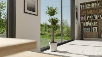 3 new interior plants ready for V-Ray 3.6