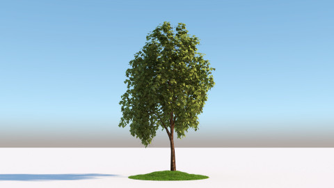 Tree | FlyingArchitecture