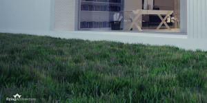 Realistic grass in Rhinoceros
