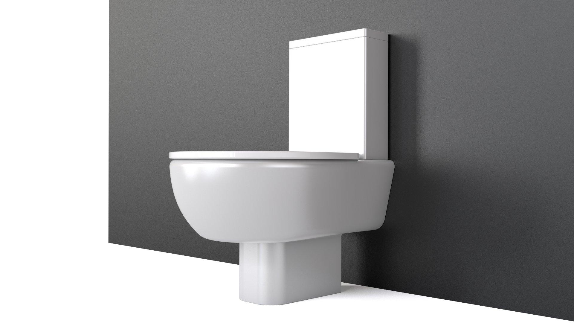 Toilet meridian roca flyingarchitecture for Wc roca meridian