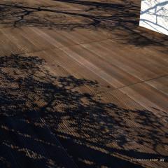 Scanned Bankirai Wood Planks - PBR