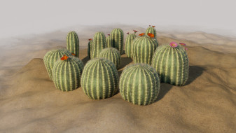 Small cactus models