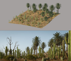 The Saguaro house - Making-of
