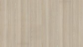 Ash Sand Lyon Texture