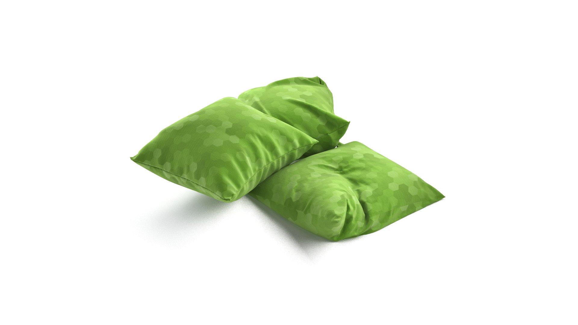 Set of Pillows 04