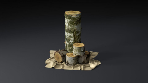 Decorative Birch logs