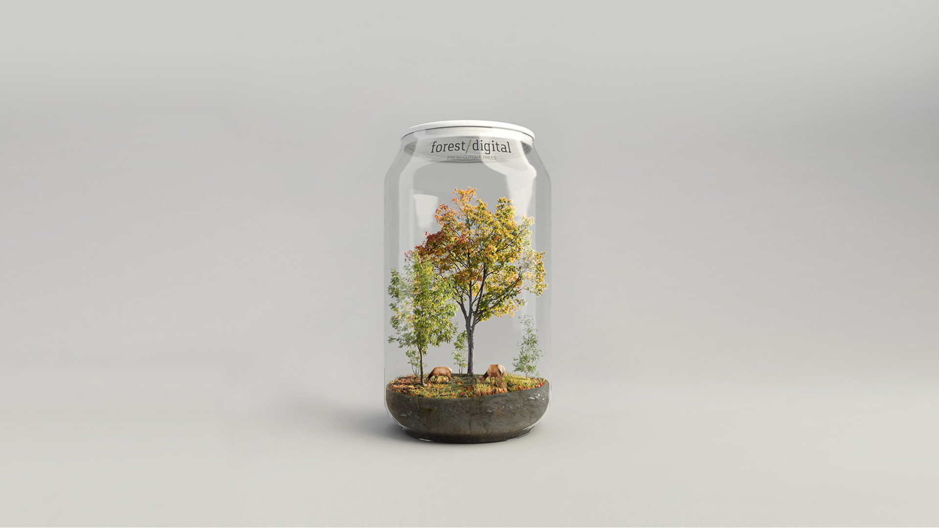 forest/digital Trees vol. 5 - Autumn Trees