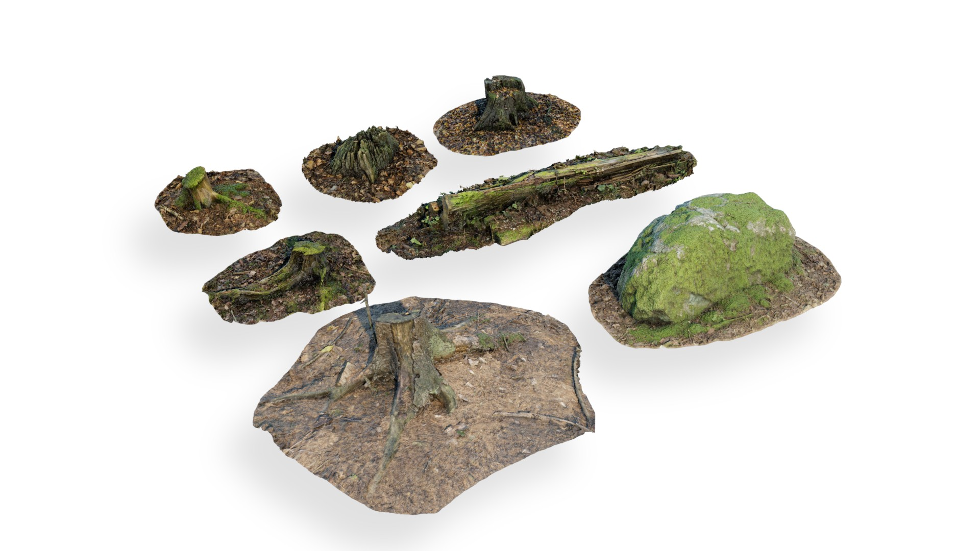 Scanned forest assets