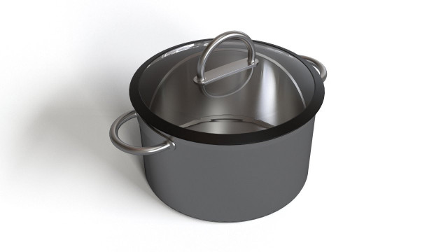 Large kitchen pot